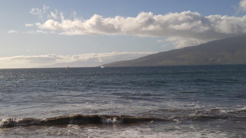 whale spout far